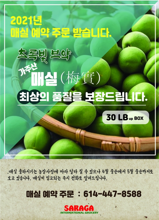 매실 japanese plum 예약-01.jpg